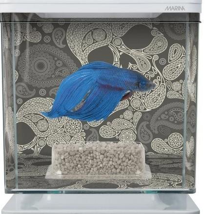 Квадратный аквариум