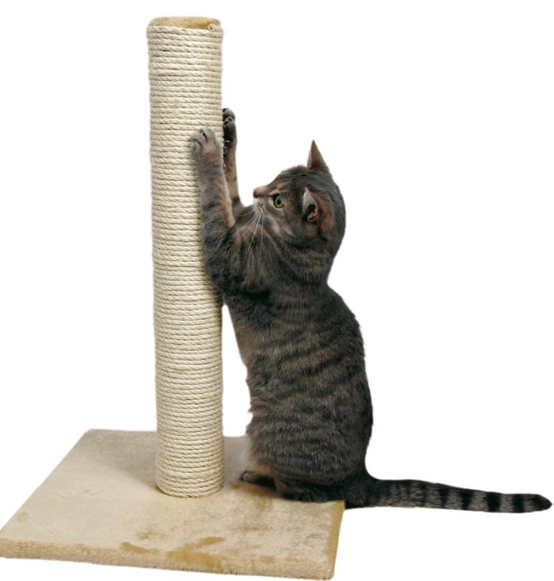 Когтеточка-столбик на подставке