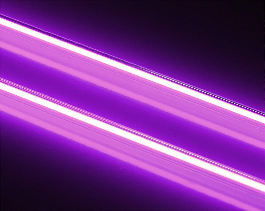 Ультрафиолет важен для черепах