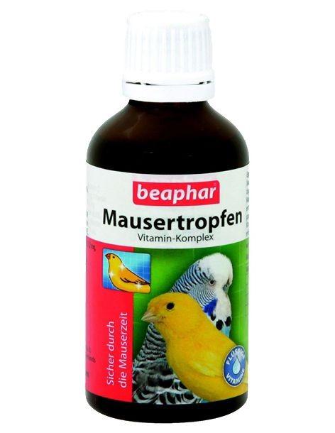 Лечение для попугая