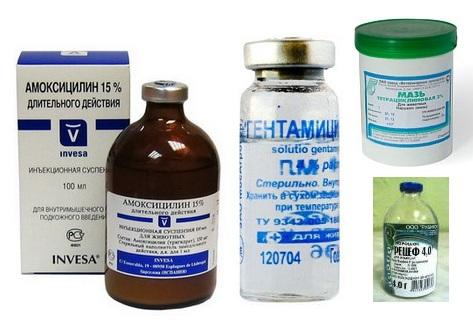 Ветеринарные антибиотики