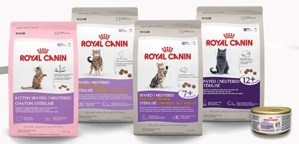 Корма сухие Royal Canin для кошек