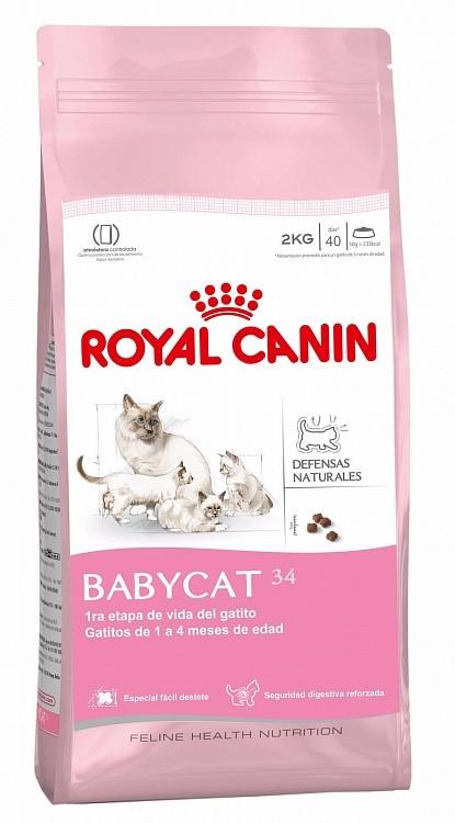 Бебикет. Ком для котят 1–4 месяца