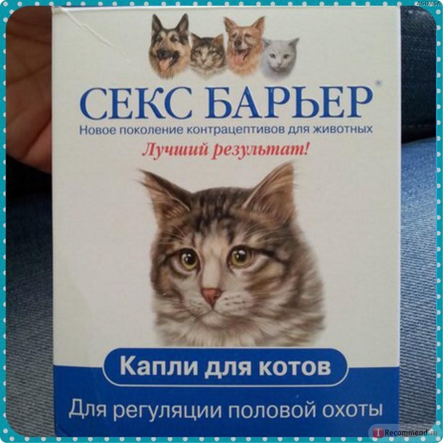 Секс барьер для кошек в каплях