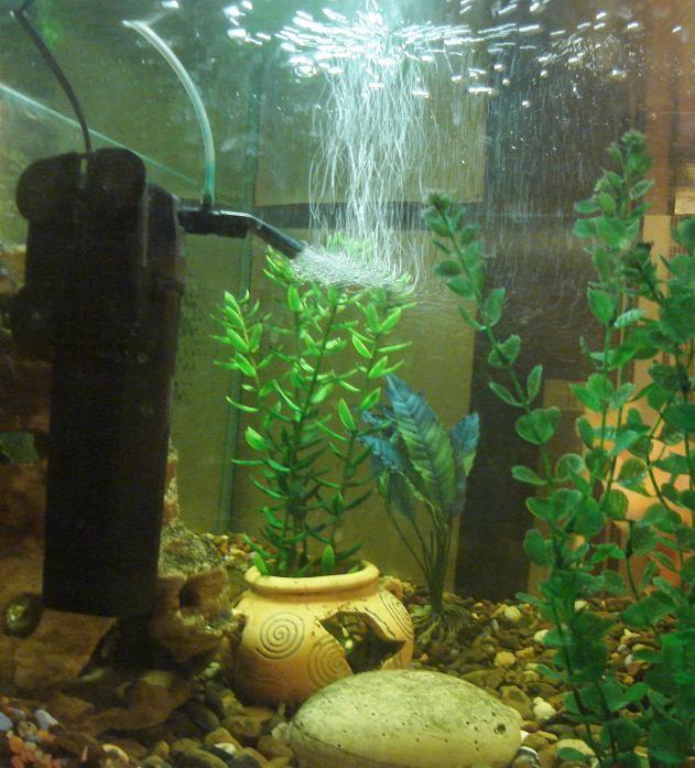 Аэрация аквариума