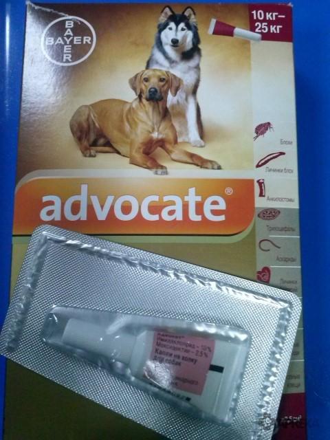 Адвокат – противопаразитарные капли на холку для собак