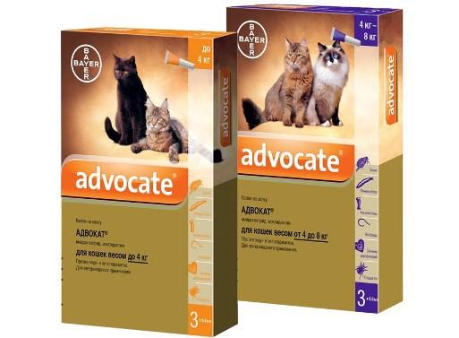 Капли для кошек «Адвокат»