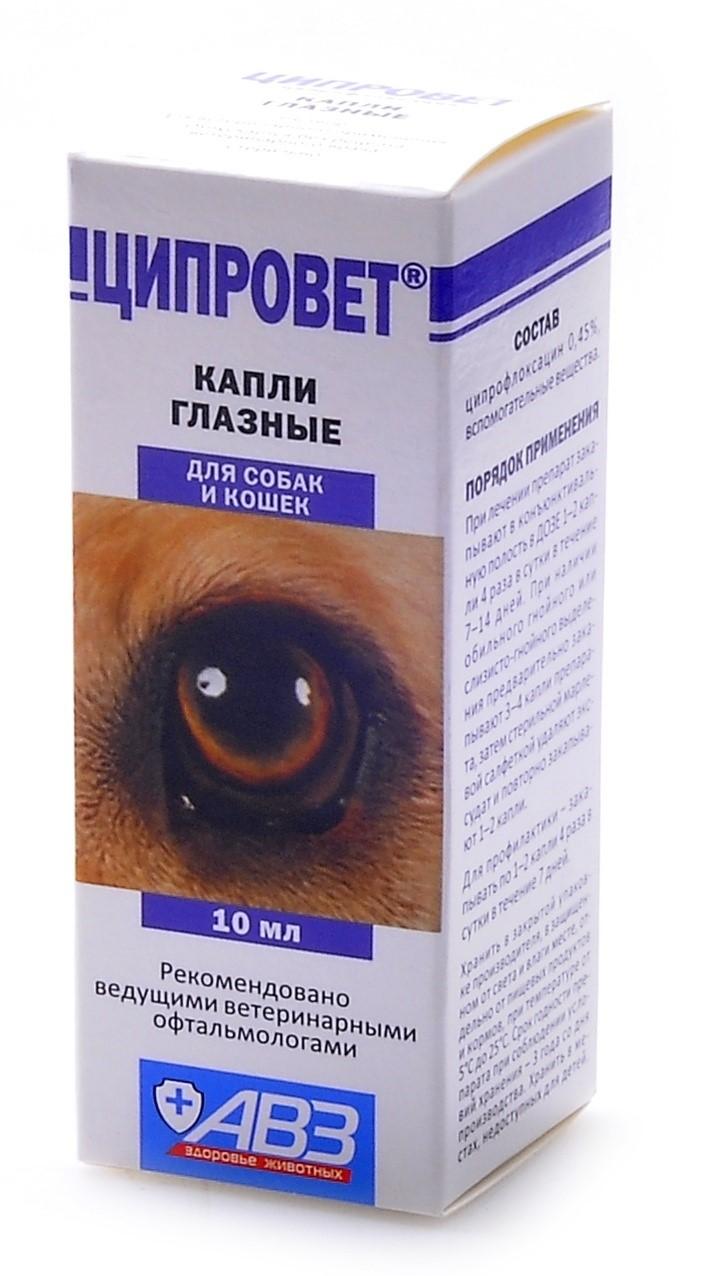 Ципровет – глазные капли для собак