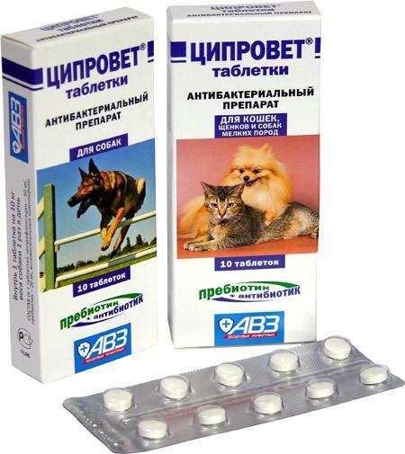Ципровет в таблетках для животных