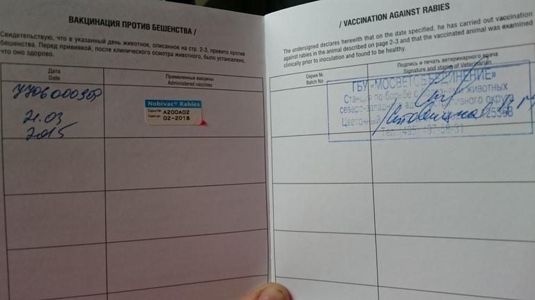 Данные о проведенной вакцинации должны быть занесены в паспорт собаки