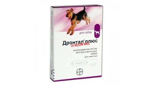 Дронтал плюс имеет вкус мяса, поэтому собаки употребляют лекарство без проблем