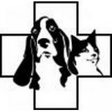 Ветеринарная клиника эм си Доктор