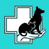 Ветеринарная клиника Зоо Доктор